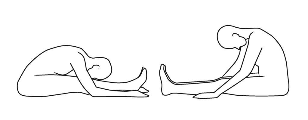 Skeletal variations in caterpillar pose - functional yoga